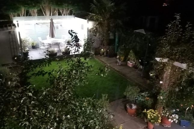 Rear Garden (At Night)