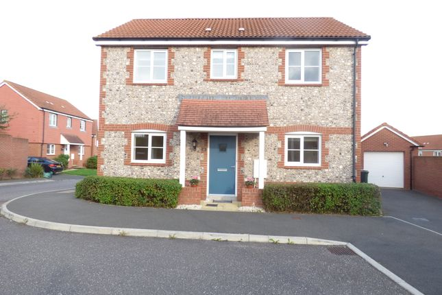 Thumbnail Detached house to rent in Higher Meadow, Cranbrook, Exeter
