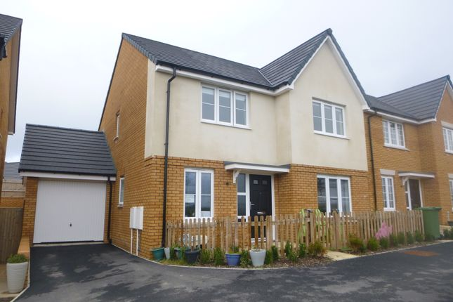Detached house to rent in Lapwing Row, Bude, Cornwall