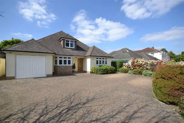 Thumbnail Detached bungalow to rent in Beverley Close, Epsom