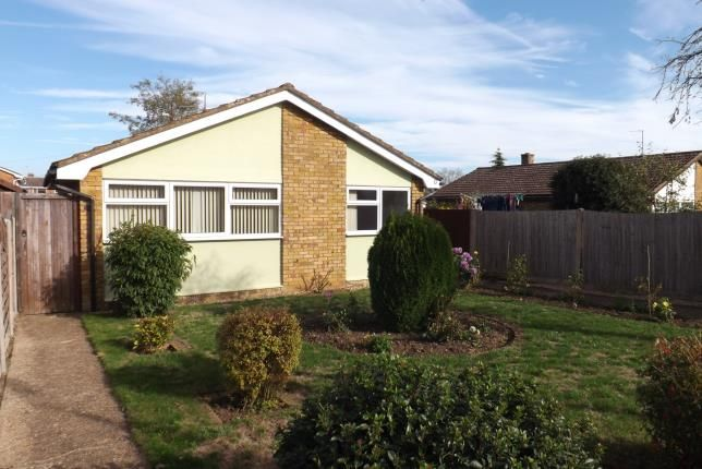 Thumbnail Bungalow for sale in Rookery Walk, Clifton, Shefford, Bedfordshire