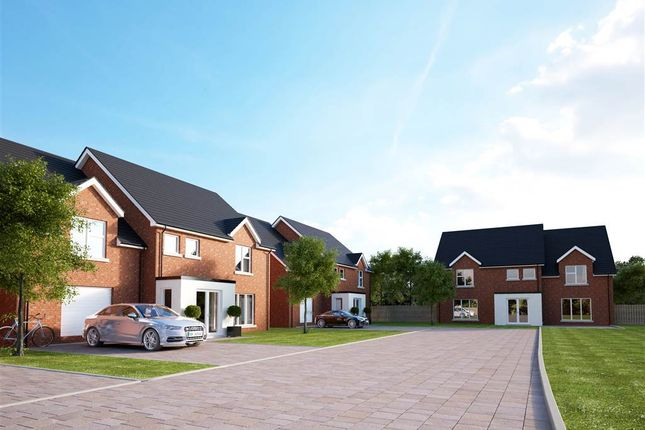Thumbnail Detached house for sale in 2, Meadow View, Jordanstown