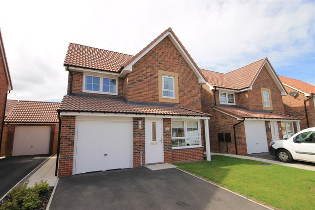 Thumbnail Detached house to rent in De Lacy Road, Northallerton