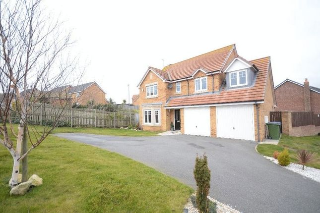 Thumbnail Detached house for sale in Staithes Court, Seaham