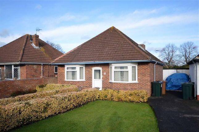 Thumbnail Detached bungalow for sale in Beaver Lane, Ashford, Kent