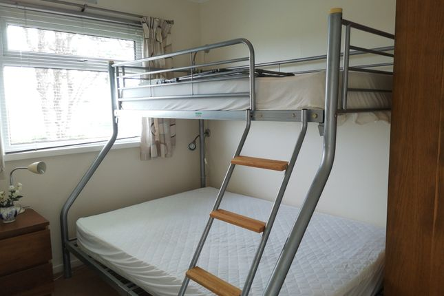 Double Bunk Room of Norton Park, Norton, Dartmouth TQ6