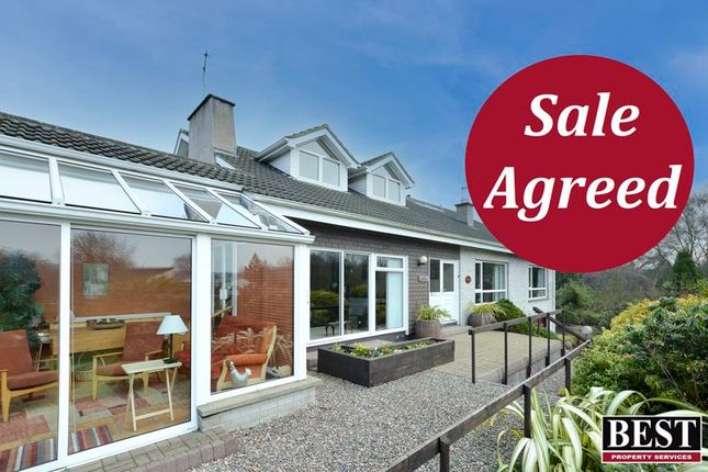 Thumbnail Detached house for sale in Ballynorthland Park, Dungannon