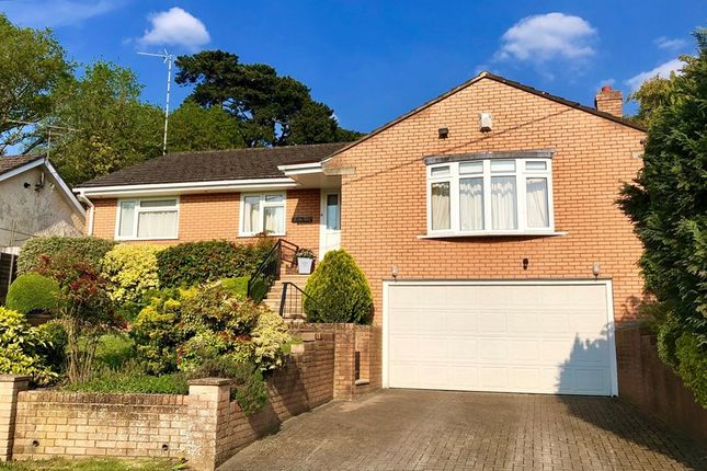 Thumbnail Detached bungalow for sale in Brook Lane, Corfe Mullen, Wimborne