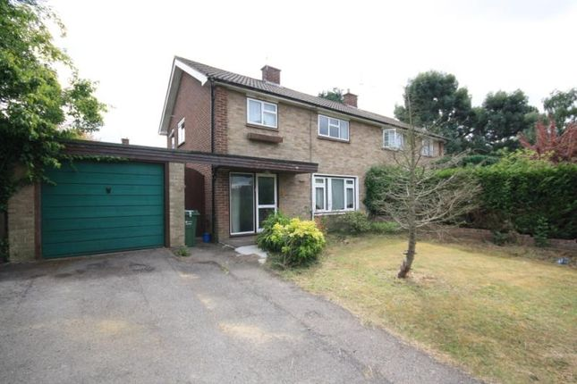 Thumbnail Semi-detached house to rent in Hunts Close, Guildford