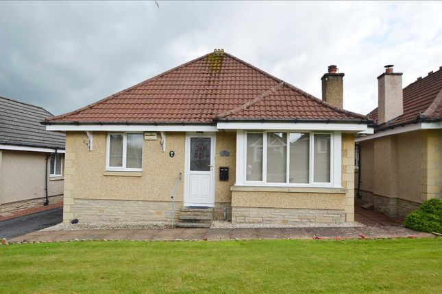 Thumbnail Bungalow for sale in Watt Court, Stonehouse, Larkhall