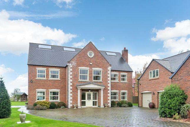 Thumbnail Detached house for sale in West Meadows, Allington, Grantham