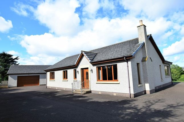Thumbnail Detached bungalow for sale in Strathdale, Crescent Street, Halkirk