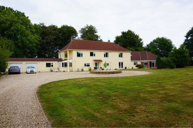 Thumbnail Detached house for sale in Lyme Road, Axminster