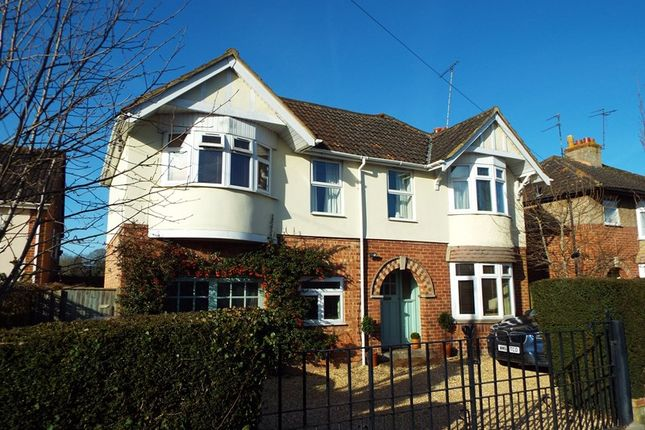 Thumbnail Property for sale in Rodden Road, Frome