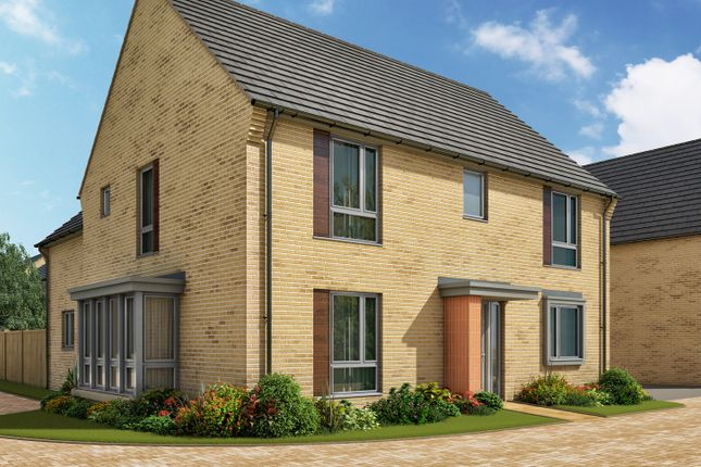 """Thumbnail Detached house for sale in """"The Clarence 3"""" at Heron Road, Northstowe, Cambridge"""