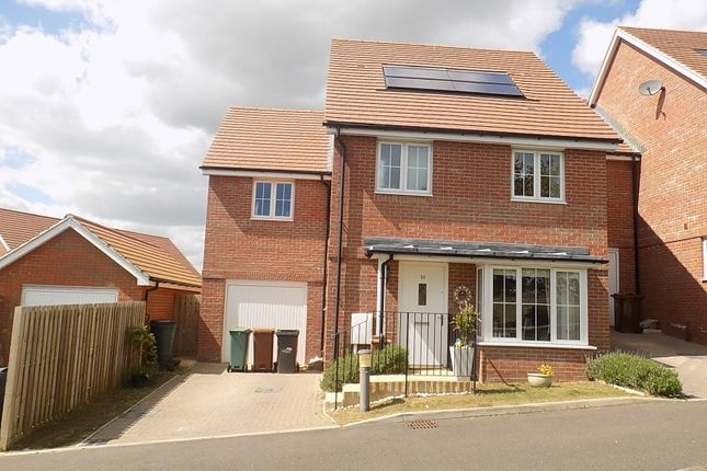 Thumbnail Detached house for sale in Carnforth Crescent, Eastbourne