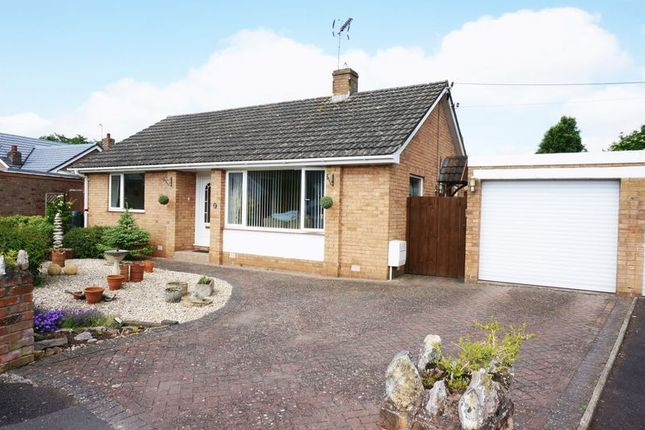 Thumbnail Detached bungalow for sale in Footlands Close, Sherford, Taunton