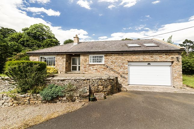 Thumbnail Detached bungalow for sale in Orchard House, Thorngrafton, Hexham, Northumberland
