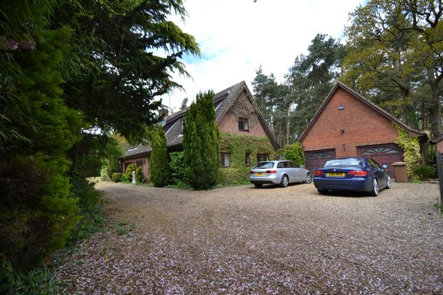 Thumbnail Property for sale in Morton On The Hill, Norwich