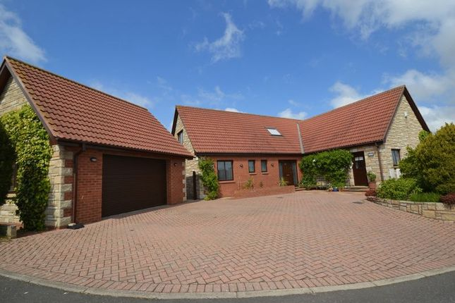 Thumbnail Detached bungalow for sale in Fiveacres, Wooler
