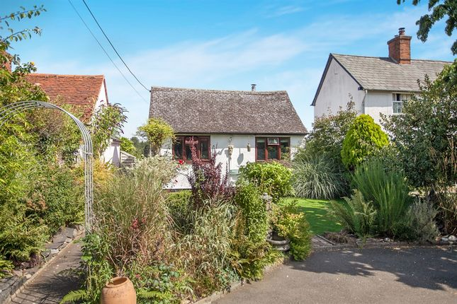 Thumbnail Detached bungalow for sale in Mill Lane, Terling, Chelmsford