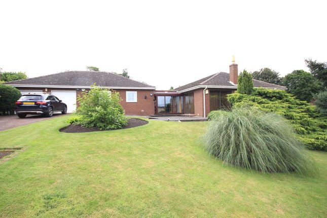 Thumbnail Detached bungalow for sale in The Pinfold, Barnburgh, Doncaster