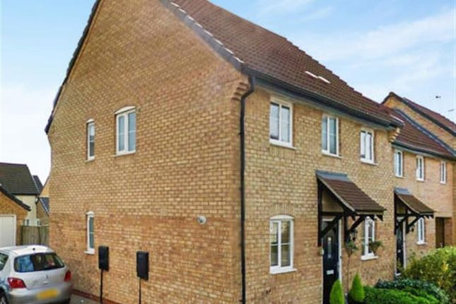 Thumbnail Semi-detached house for sale in Ruster Way, Hampton Hargate, Peterborough