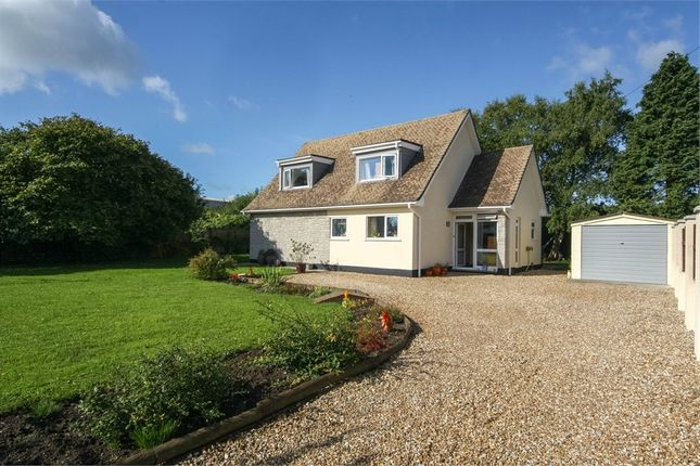 Thumbnail Detached house for sale in Pine Lodge, 4 Ashcott Road, Meare, Glastonbury, Somerset
