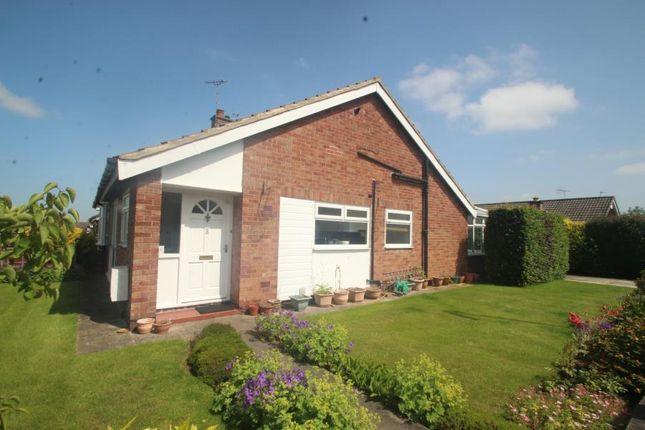 2 bed bungalow to rent in Links Way, Harrogate HG2
