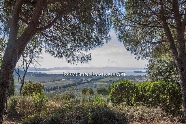 Property For Sale Trasimeno Lake View