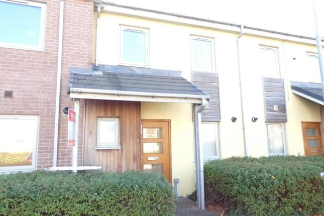 Thumbnail Terraced house to rent in May Courtyard, Shrove Pass, Gateshead