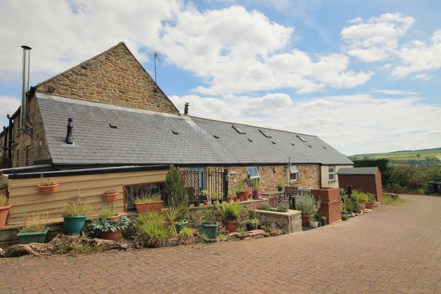 Bungalow for sale in Cockhouse Lane, Ushaw Moor, Durham