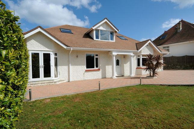 Thumbnail Detached house to rent in Redcliffe Road, Torquay