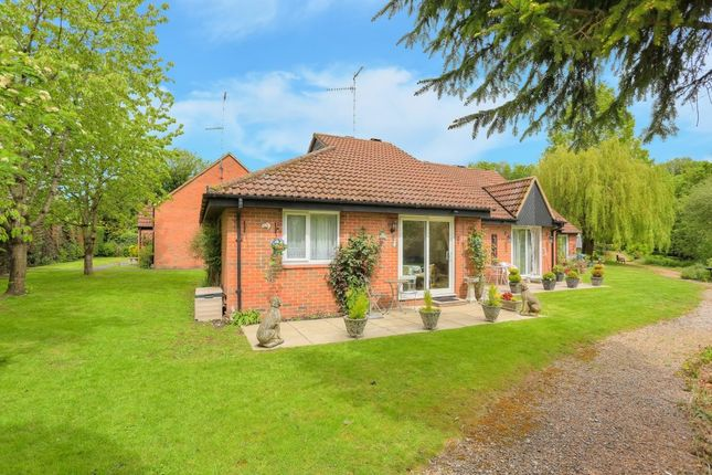 Thumbnail Bungalow for sale in The Beeches, Park Street, St. Albans