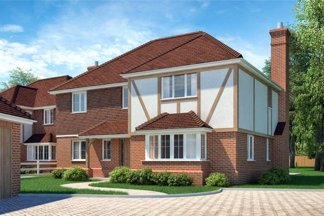 Thumbnail Detached house for sale in Ham Manor, Angmering, West Sussex