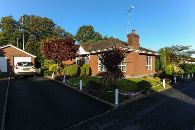 Thumbnail Bungalow for sale in Finchley Vale, Belfast