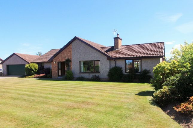Thumbnail Detached bungalow for sale in Mary Croft, Forres