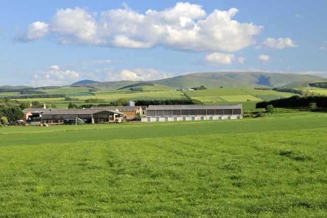 Thumbnail Land for sale in New Heaton And Stickle Heaton Farms, Cornhill-On-Tweed, Northumberland
