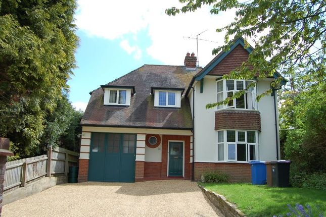 Thumbnail Detached house for sale in Paget Road, Ipswich