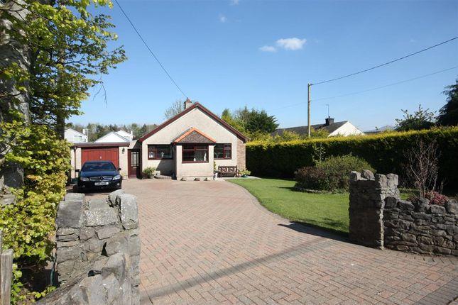 Thumbnail Detached bungalow to rent in Hafan, Lon Refail, Llanfairpwll
