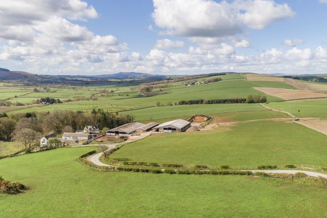 Thumbnail Land for sale in Lochanhead, Dumfries