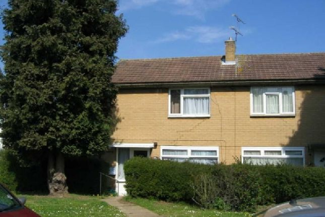 Thumbnail Semi-detached house to rent in Haseldine Meadows, Hatfield