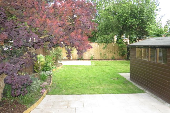 Garden of Geneva Road, Ipswich IP1