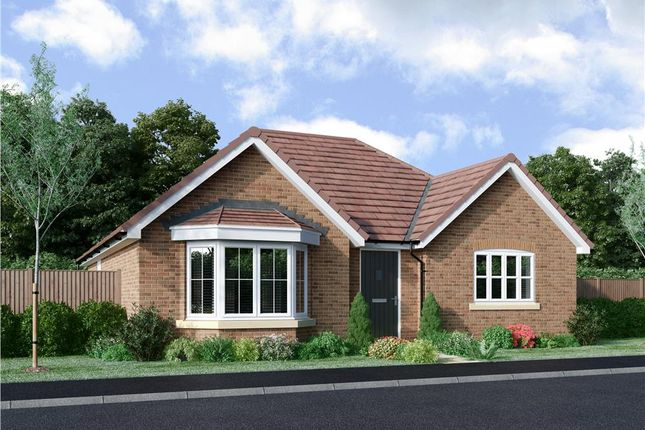 """Thumbnail Bungalow for sale in """"Abberley"""" at Spire View, Bottesford, Nottingham"""