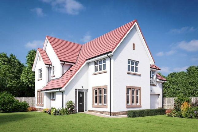 "Thumbnail Detached house for sale in ""The Lowther"" at Edinburgh Road, Belhaven, Dunbar"