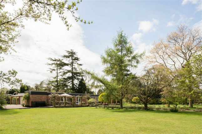 Thumbnail Detached house for sale in Ardleigh, Colchester, Essex