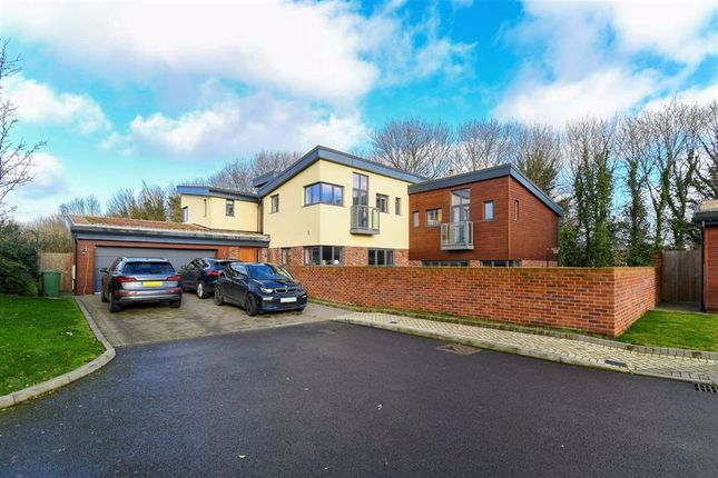 Thumbnail Detached house for sale in The Harlequins, Sandy Lane, Bushey