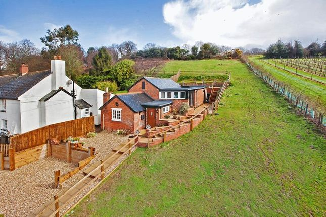 Thumbnail Detached house for sale in Dalditch Lane, Budleigh Salterton