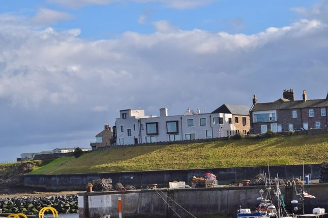 Thumbnail Leisure/hospitality for sale in Farne House, Seahouses