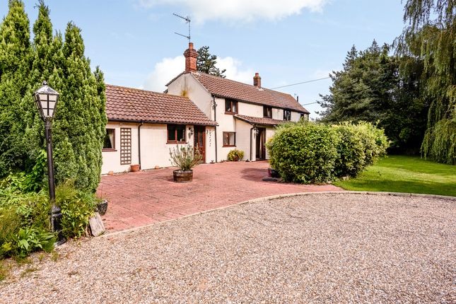 Thumbnail Detached house for sale in Cess Lane, Martham, Great Yarmouth